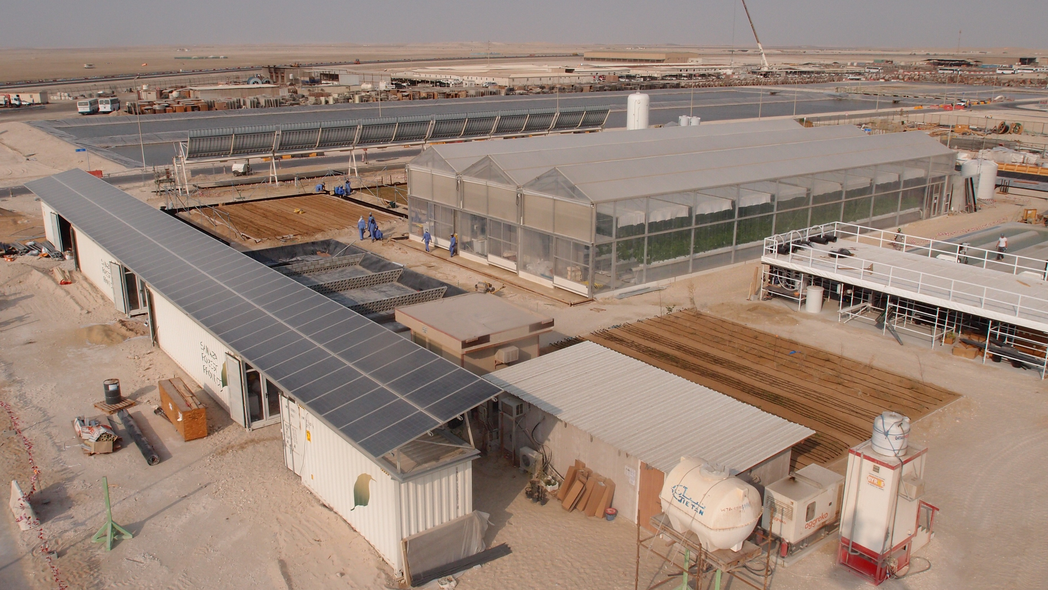Sahara project grows cucumbers using seawater and solar