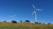 Finance 2017 report outlines how the wind sector can respond to approaching challenges