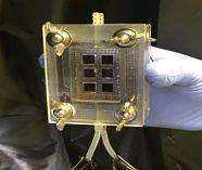 HyperSolar team recognised in peer-reviewed scientific journal for hydrogen innovation