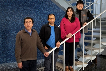 Researchers at Brookhaven Lab Devise Method for Producing Propylene While Consuming Carbon Dioxide
