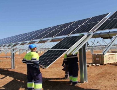 Endesa to Develop Pioneering Agrivoltaic and Beekeeping in PV Facilities Project