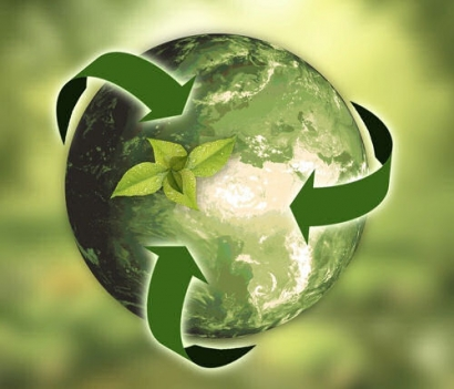 How Can Environmental Management Systems Help Renewables?