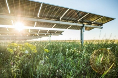 McDonald's and eBay Partner with Lightsource bp to Power US Operations with Solar