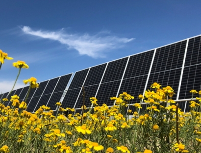 Nestle Invests in Taygete I Solar Project