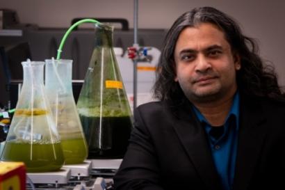 University of Utah Engineers Develop New Method to Convert Algae to Biofuel