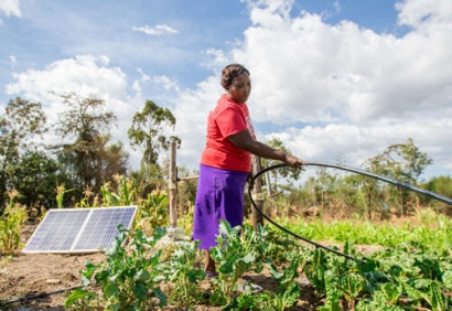 Bboxx, EDF, and SunCulture Team Up With Togo Government to Accelerate Access to Solar-Powered Farming