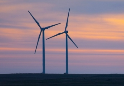 Tesla to Supply Powerpacks to BP Windfarm