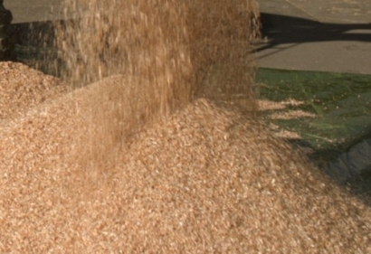 Atlantic Power Acquires Ownership Interests in Biomass Plants