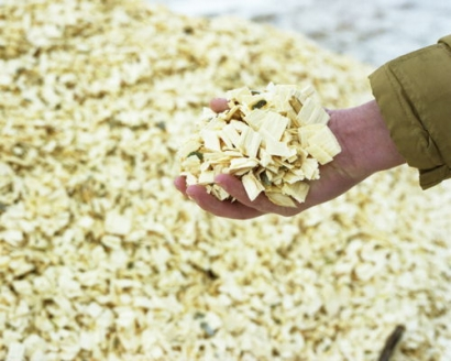 Glennmont Partners Completes Sale of Biomass Plant to Greencoat Capital