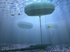 Enel and Carnegie Clean Energy to Collaborate on Wave Energy Generator Development