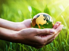 Save the Planet: Six Simple Changes That Can Make a Big Difference