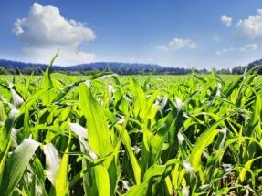 Bioenergy DevCo Acquires Italian Firm BTS Biogas