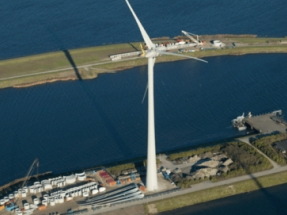 DTBird Installs New Models in the Netherlands and Germany