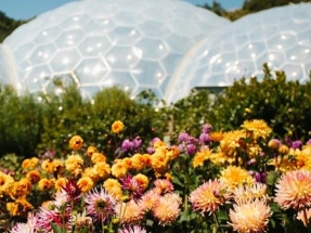 Eden Project Secures Funding for Phase One of Geothermal Plan