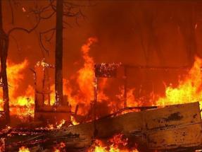 El mundo está ardiendo y es urgente revertir el curso del cambio climático