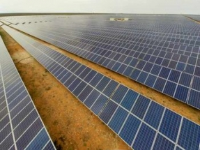 Juwi Scores Contracts for 250 MW of Solar in South Africa