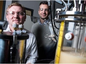 NREL Scientists Model Methane-Eating Bacteria