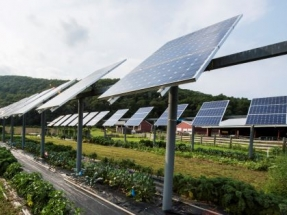 Solar and Wind Provided 93.8% of New U.S. Generating Capacity in First Third of 2021