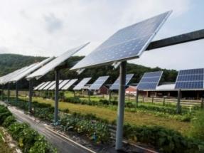 Industrial Applications of Renewable Energy