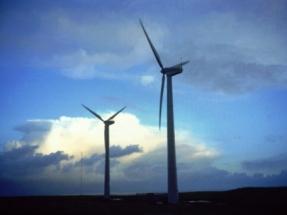 Bat Deterrent System Reduces Bat Fatalities by 54 Percent at Texas Wind Farm