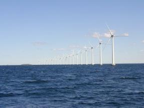 "Dutch Launch ""Zero-Subsidy"" Wind Power Tender"