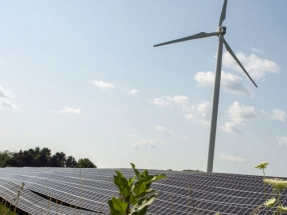 Co-Op Offering Low-Interest Loans to Farms for Clean Energy Investments