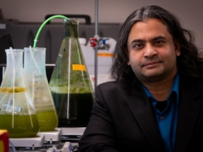University of Utah Engineers Develop New Method to Convert Algae to Biofuel