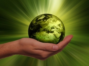 Turn Sustainability Into a Competitive Advantage In Your Supply Chain