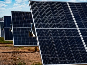 University of Richmond's Spider Solar Project Goes Live