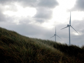 Vestas Secures 36 MW Auction Win in Poland
