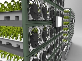 New System Significantly Reduces Power Consumption of Vertical Farms