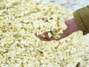Sungas Renewables and Hatch Partner on Biomass Gasification Systems