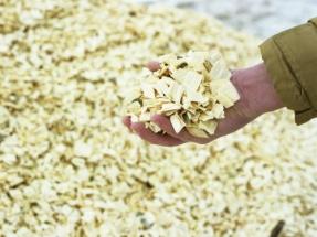 Simec Atlantis Plans Two Phase Conversion for Biomass Plant