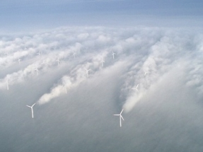 Offshore Wind Farm Control Strategies to Be Put to the Test