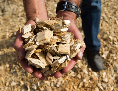 ETI recommends an increase in UK biomass production