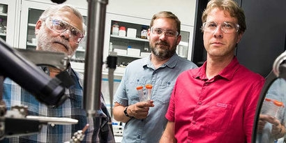 NREL research discovers new enzyme useful for bioenergy production