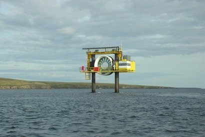 Wave and tidal energy study finds no long-term disturbance to wildlife