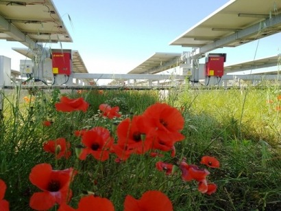Pv soltec begins construction of 1 mw pv facility in - Soltec murcia ...
