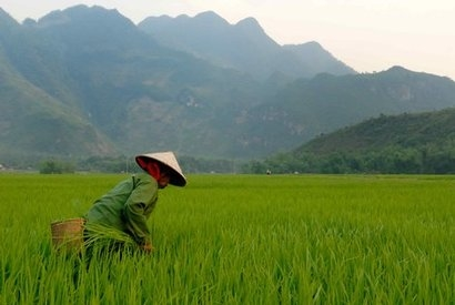 Modern Energy Management assists with development of Vietnamese wind farm
