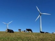 White Rock wind farm construction encourages optimism in Australian wind sector says CEC