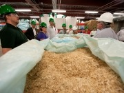 UK biomass tariff cut is deeply frustrating says REA