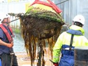 ICIT and EMEC collaborate on biofouling solutions project
