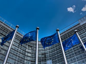 European Union decrees that palm oil is unsustainable as a green fuel