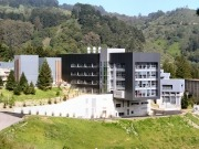 Lawrence Berkeley National Lab develops 'artificial forest'