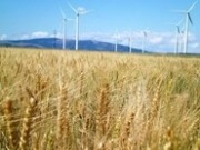 Vaisala supports SunEdison in purchase of First Wind Holdings