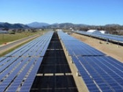 California first US state to generate more than 5 percent electricity from utility-scale solar