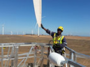 Emerging South African wind sector will need to invest in blade repair
