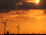 RSPB calls for renewed commitment to renewable energy by the UK Government