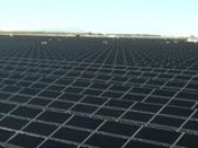 Tenaska's second large-scale solar project begins commercial operation