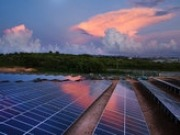 Increasing interest in partnerships for the microgrid market says energy consultancy